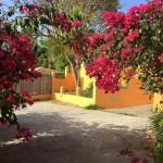 front page rental car st martin island by SXM Loc St Maarten 4